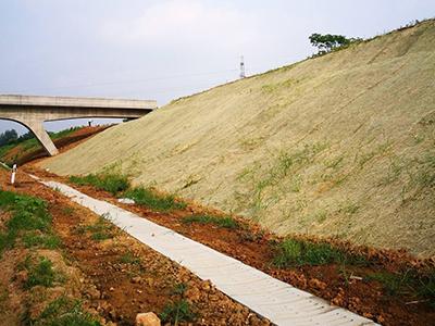 护坡生态毯